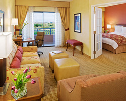 Phoenix Scottsdale-Lodging excursion-The Marriott at McDowell Mountains-Standard Suite