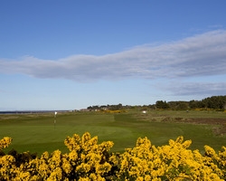 Scottish Highlands-Golf trip-Nairn-Green Fee includes 10 Euro Catering Voucher