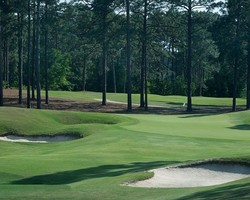 Pinehurst-Golf trek-Pinehurst No 9