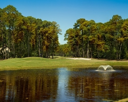 Hilton Head- GOLF travel-Oyster Reef Golf Club