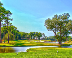 Myrtle Beach-Golf tour-Oyster Bay Golf Links
