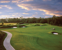 Golf Vacation Package - The Palencia Golf Club