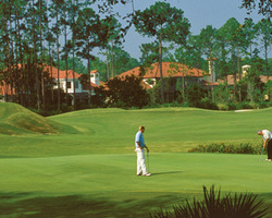 Jacksonville St Augustine- GOLF expedition-The Palencia Golf Club-Daily Rate