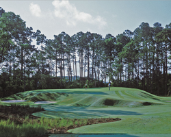 Jacksonville St Augustine-Golf outing-The Palencia Golf Club-Daily Rate