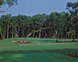 Jacksonville St Augustine-Golf travel-The Palencia Golf Club-Daily Rate