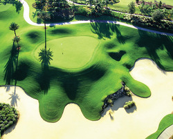 Golf Vacation Package - Reunion Golf Resort - Legacy Course