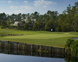Tampa St Petersburg- GOLF holiday-Saddlebrook Resort - Palmer Course