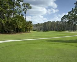 Tampa St Petersburg- GOLF weekend-Saddlebrook Resort - Palmer Course