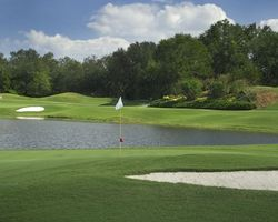 Tampa St Petersburg- GOLF tour-Saddlebrook Resort - Palmer Course