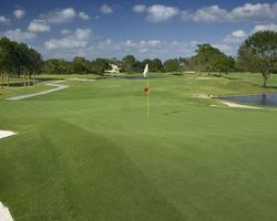 Tampa St Petersburg- GOLF trek-Saddlebrook Resort - Palmer Course