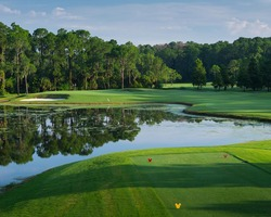 Orlando- GOLF holiday-Disney Palm Golf Club-Daily Rate