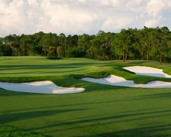 Orlando- GOLF outing-Disney Palm Golf Club-Daily Rate