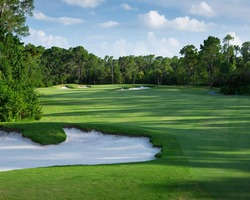 Orlando- GOLF trip-Disney Palm Golf Club-Daily Rate
