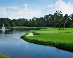 Orlando- GOLF vacation-Disney Palm Golf Club-Daily Rate