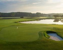 Orlando- GOLF excursion-Disney Palm Golf Club-Daily Rate