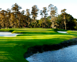 Golf Vacation Package - Carrollwood Country Club - Pine Course