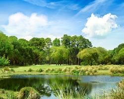 Hilton Head-Golf expedition-Planter s Row Golf Club-Daily Rate
