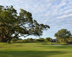 Charleston- GOLF trek-The Plantation Course at Edisto