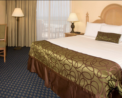 Daytona-Lodging travel-Ocean Breeze Club Hotel of Daytona Beach-Standard Hotel Room