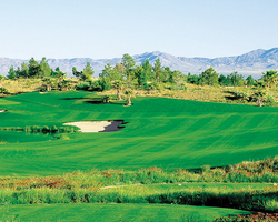 Las Vegas- GOLF excursion-Primm Valley Golf Club - Lakes Course