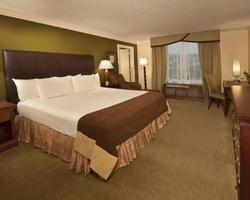 Orlando-Lodging excursion-Rosen Centre Hotel-Standard Room