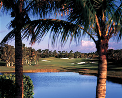 Bahamas- GOLF tour-The Reef Course