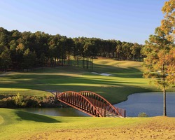 Robert Trent Jones Trail-Golf trek-Ross Bridge Golf Club-Daily Rate