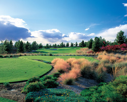 Golf Vacation Package - Arizona Grand - Suite + Dinosaur Mtn/Raven/Southern Dunes for $149!