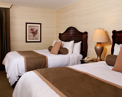 Tampa St Petersburg-Lodging outing-Saddlebrook Resort-Deluxe Guest Room Resort Package - Double Occupancy