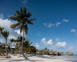 Punta Cana-Lodging holiday-Sanctuary Cap Cana-Castle Junior Suite Oceanfront All Inclusive - Double Occupancy