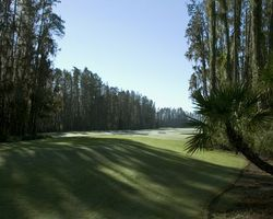 Tampa St Petersburg- GOLF expedition-Saddlebrook Resort - Saddlebrook Course