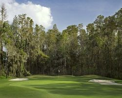 Tampa St Petersburg- GOLF holiday-Saddlebrook Resort - Saddlebrook Course