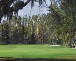Tampa St Petersburg- GOLF vacation-Saddlebrook Resort - Saddlebrook Course