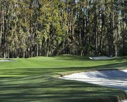 Tampa St Petersburg- GOLF trek-Saddlebrook Resort - Saddlebrook Course