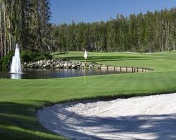 Tampa St Petersburg- GOLF travel-Saddlebrook Resort - Saddlebrook Course