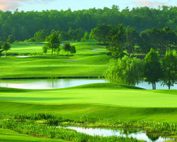 Orlando- Special weekend-Upscale 6 Bedroom Home and 3 Top-End Golf Courses for 199 per person per day -Golf Zoo Escape house golf package