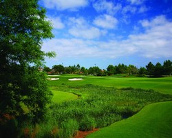 Orlando-Golf outing-Shingle Creek Golf Club
