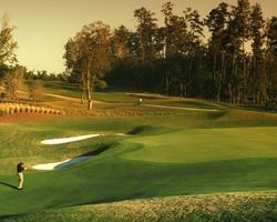 Tampa St Petersburg- GOLF vacation-Southern Hills Plantation-Daily Rate