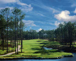 Myrtle Beach- GOLF trek-Ocean Ridge Golf - Tiger s Eye-Daily Rate