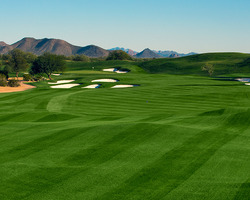 Phoenix Scottsdale-Golf outing-TPC Stadium Course - Home of the Phoenix Open-Daily Rate
