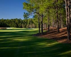 Orlando-Golf holiday-Tranquilo Golf Club