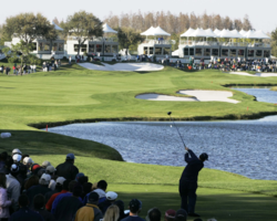 Golf Vacation Package - TPC of Tampa Bay