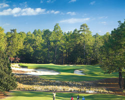 Pinehurst-Golf travel-Pinehurst No 2