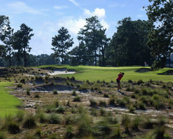 Pinehurst-Golf outing-Pinehurst No 2