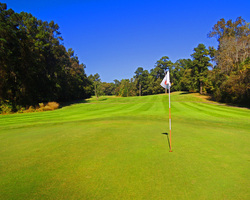 Myrtle Beach-Golf expedition-Witch Golf Course