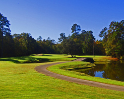 Myrtle Beach- GOLF travel-Witch Golf Course