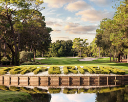 Tampa St Petersburg- GOLF tour-Innisbrook - Copperhead-Daily Rate