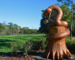 Tampa St Petersburg-Golf trek-Innisbrook - Copperhead-Daily Rate