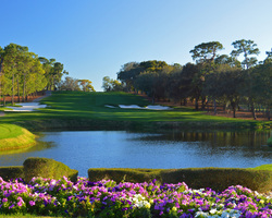 Tampa St Petersburg-Golf holiday-Innisbrook - Copperhead-Daily Rate