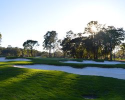 Tampa St Petersburg-Golf tour-Innisbrook - Copperhead-Daily Rate